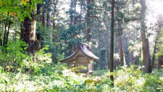 初詣がもっと楽しくなる神社のはなし