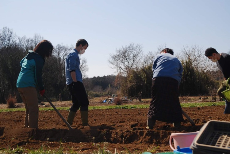 埼玉県ときがわ町でのフィールドワークで、ジャガイモ植えの様子。