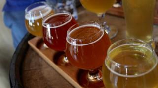 僕らのビール学